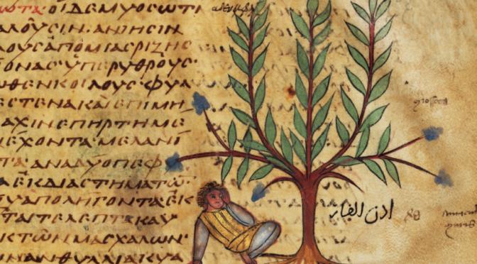De Bagdad à Constantinople: le transfert des savoirs médicaux (XI-XVe siècles)